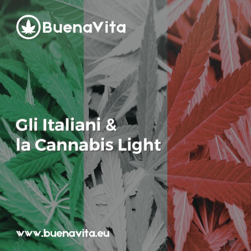 news Buenavita cannabis Milano