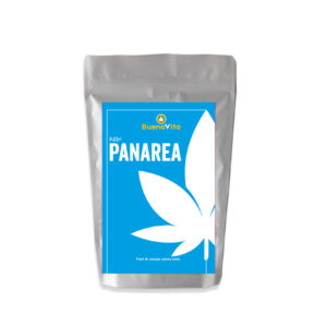 Cannabis Light – NEW PANAREA – CBD 12,8% – BUENAVITA