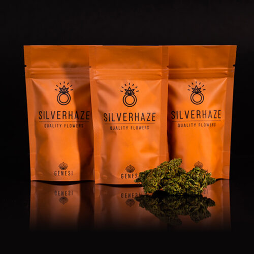 Cannabis Light – Silver Haze – Genesi
